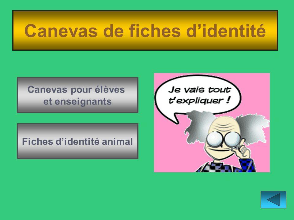 Canevas de fiches d'identité