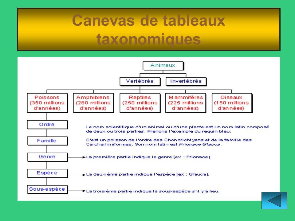 Canevas de tableaux taxonomiques