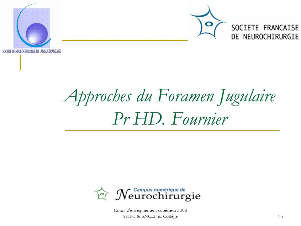 Approches du Foramen Jugulaire Pr HD. Fournier
