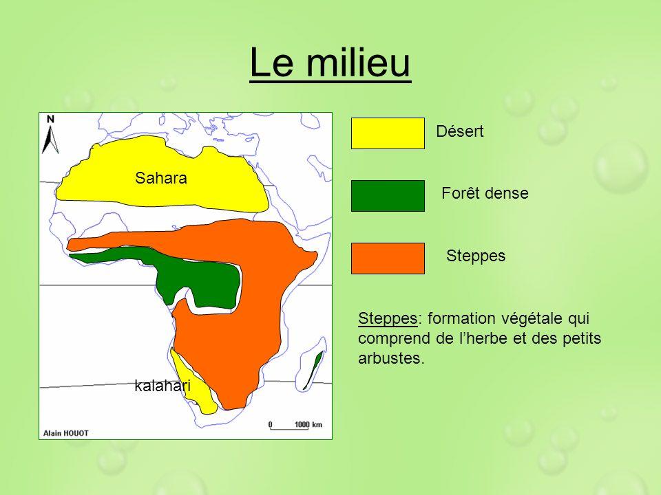 Le milieu Désert Sahara Forêt dense Steppes