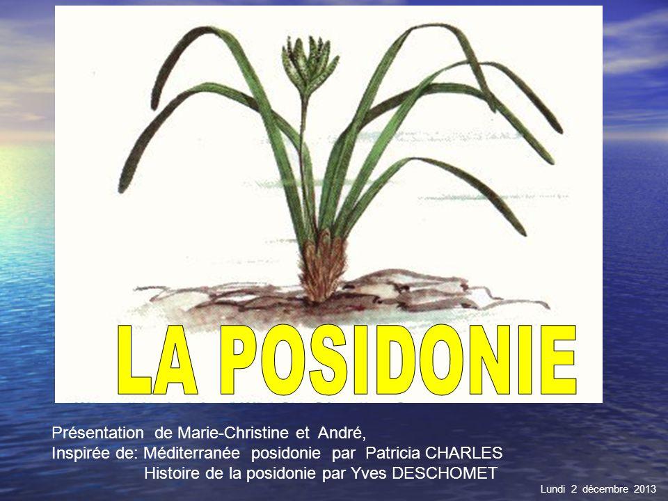 LA POSIDONIE Présentation de Marie-Christine et André,