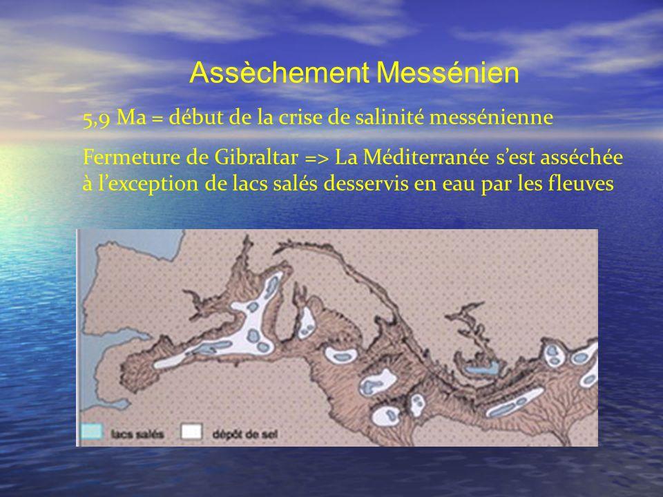 Assèchement Messénien