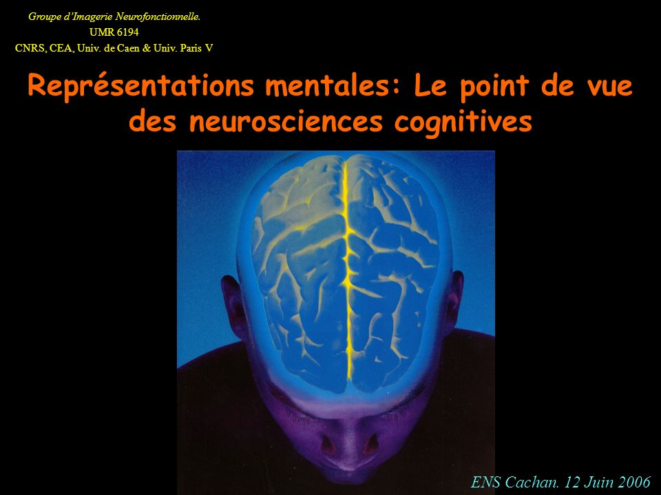 Représentations mentales: Le point de vue des neurosciences cognitives