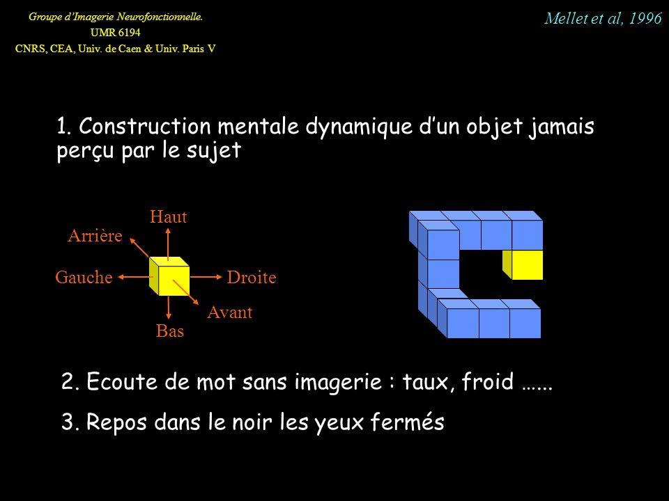 1. Construction mentale dynamique d'un objet jamais perçu par le sujet
