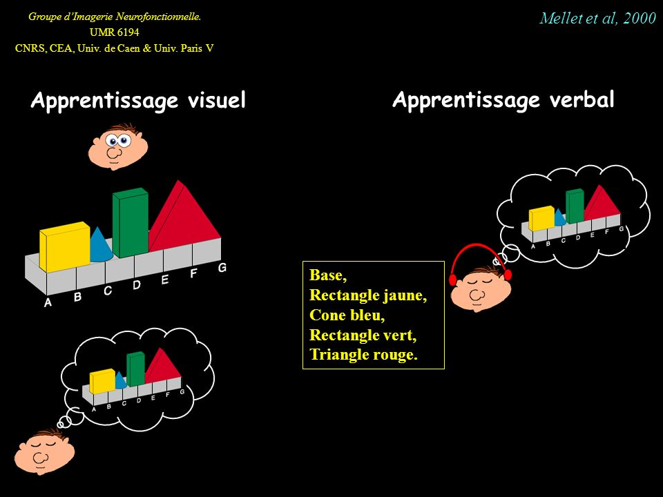 Apprentissage verbal Apprentissage visuel Mellet et al, 2000 Base,