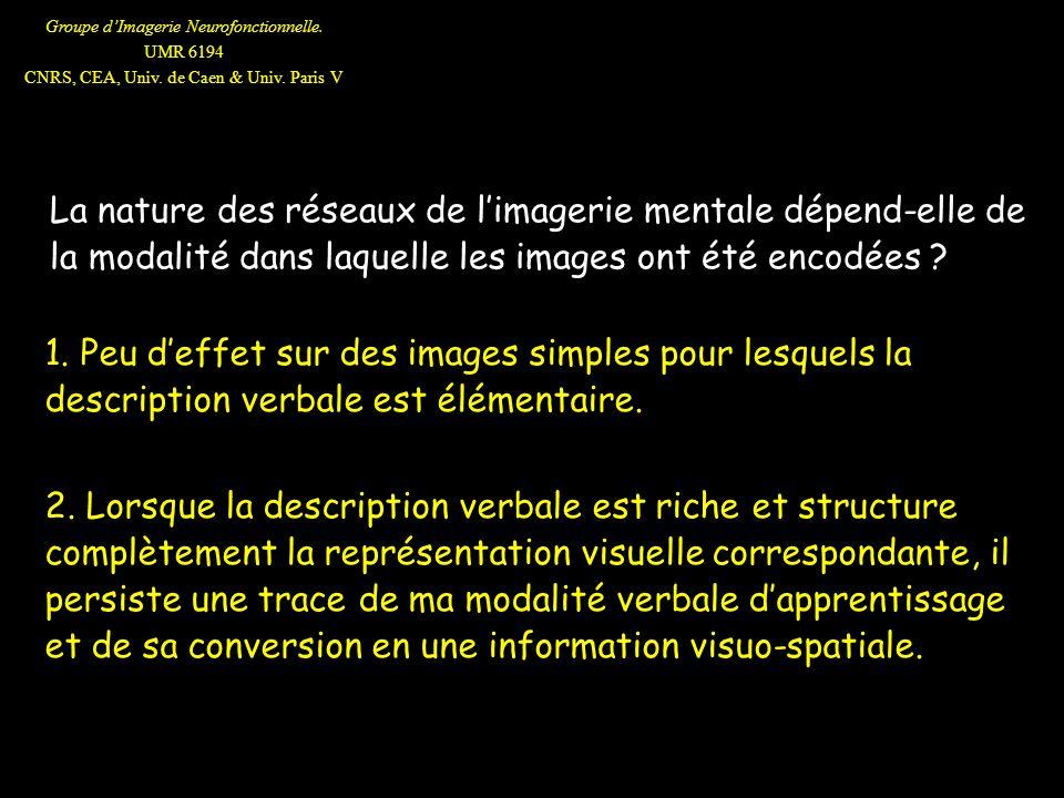 La nature des réseaux de l'imagerie mentale dépend-elle de la modalité dans laquelle les images ont été encodées