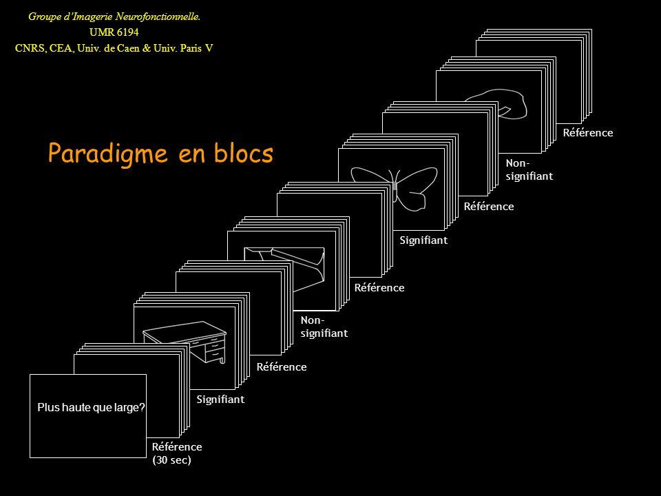 Paradigme en blocs v Référence Non-signifiant Signifiant