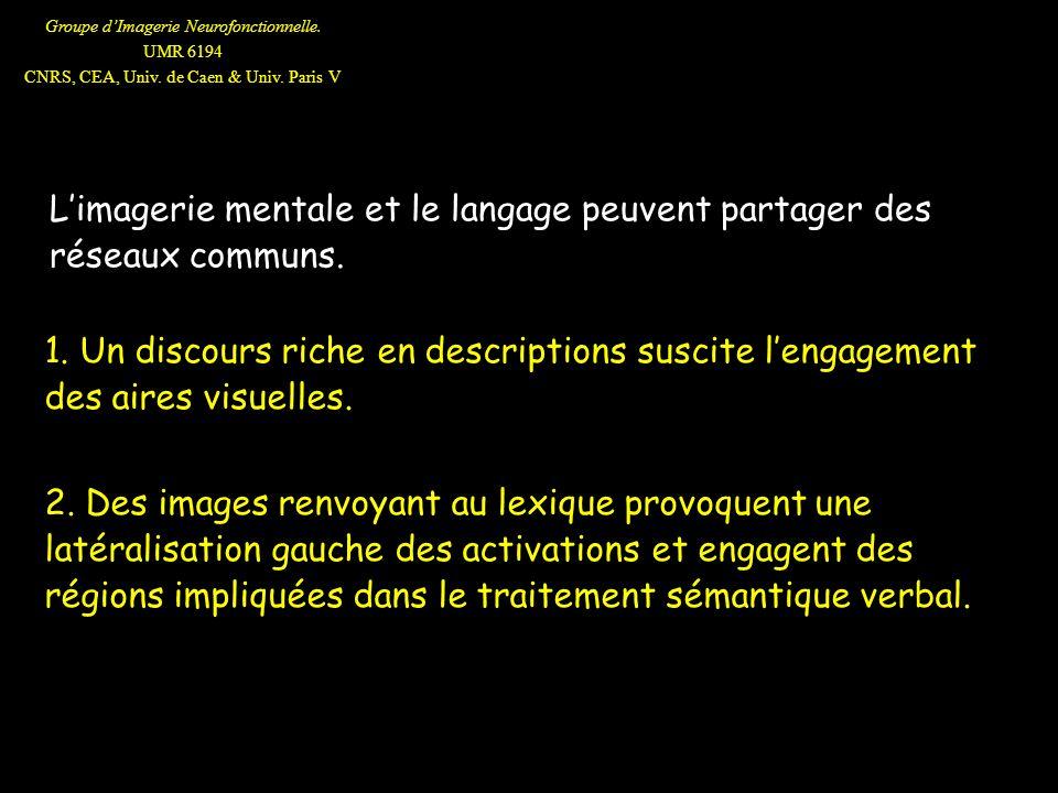 L'imagerie mentale et le langage peuvent partager des réseaux communs.