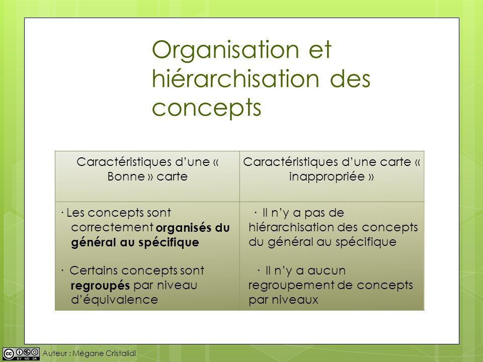 Organisation et hiérarchisation des concepts