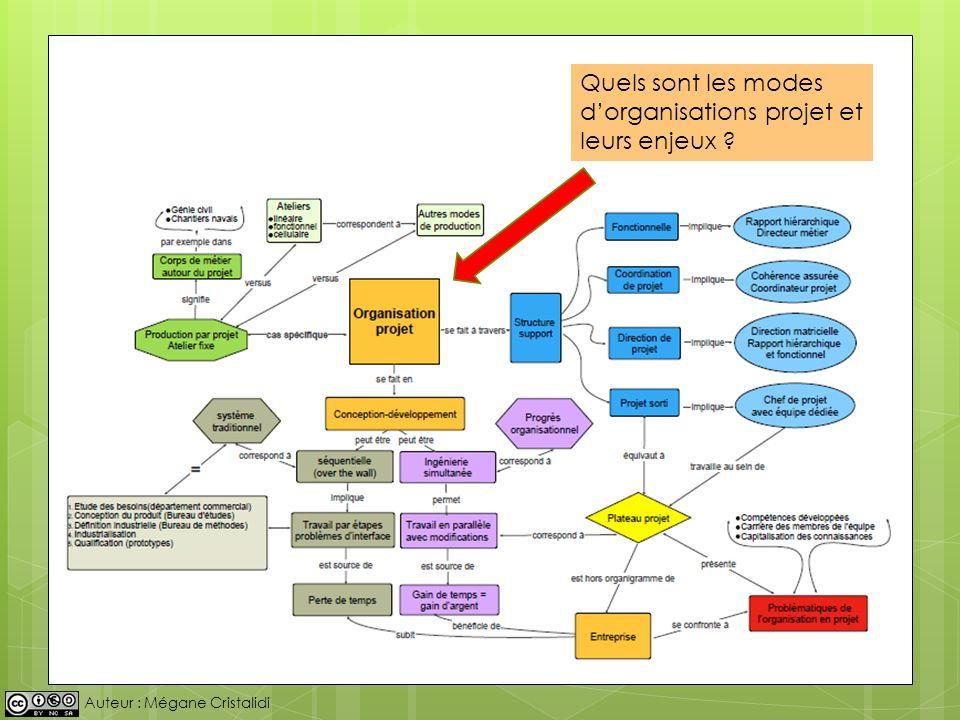 Quels sont les modes d'organisations projet et leurs enjeux