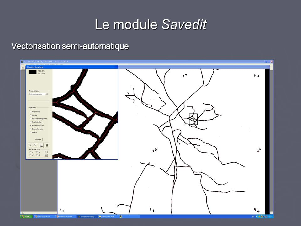 Le module Savedit Vectorisation semi-automatique