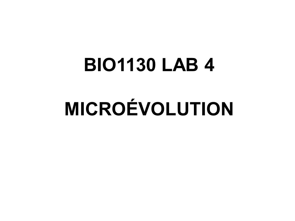 BIO1130 LAB 4 MICROÉVOLUTION