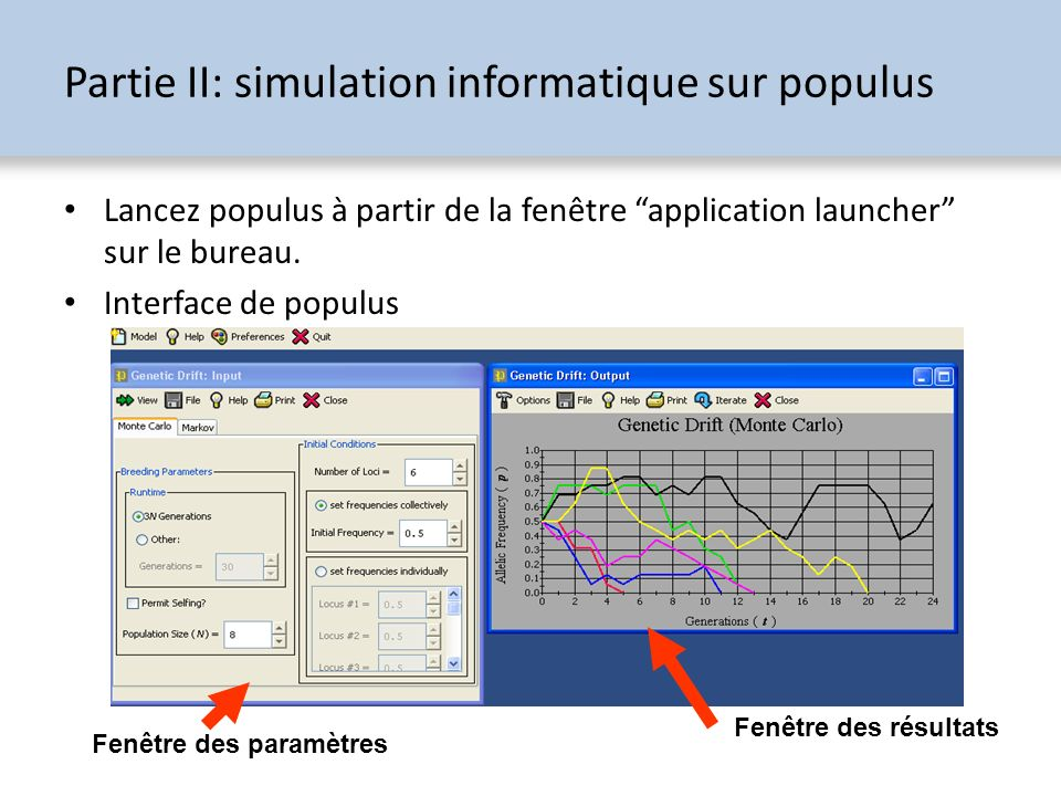 Partie II: simulation informatique sur populus