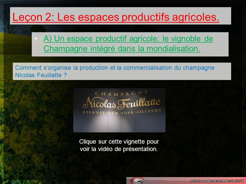 Leçon 2: Les espaces productifs agricoles.