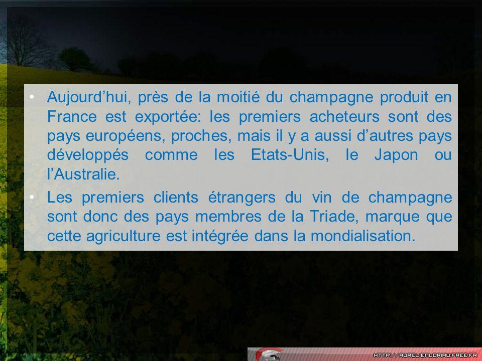 Aujourd'hui, près de la moitié du champagne produit en France est exportée: les premiers acheteurs sont des pays européens, proches, mais il y a aussi d'autres pays développés comme les Etats-Unis, le Japon ou l'Australie.