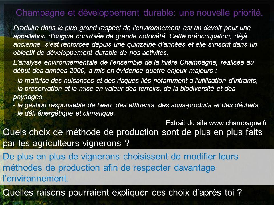 Champagne et développement durable: une nouvelle priorité.