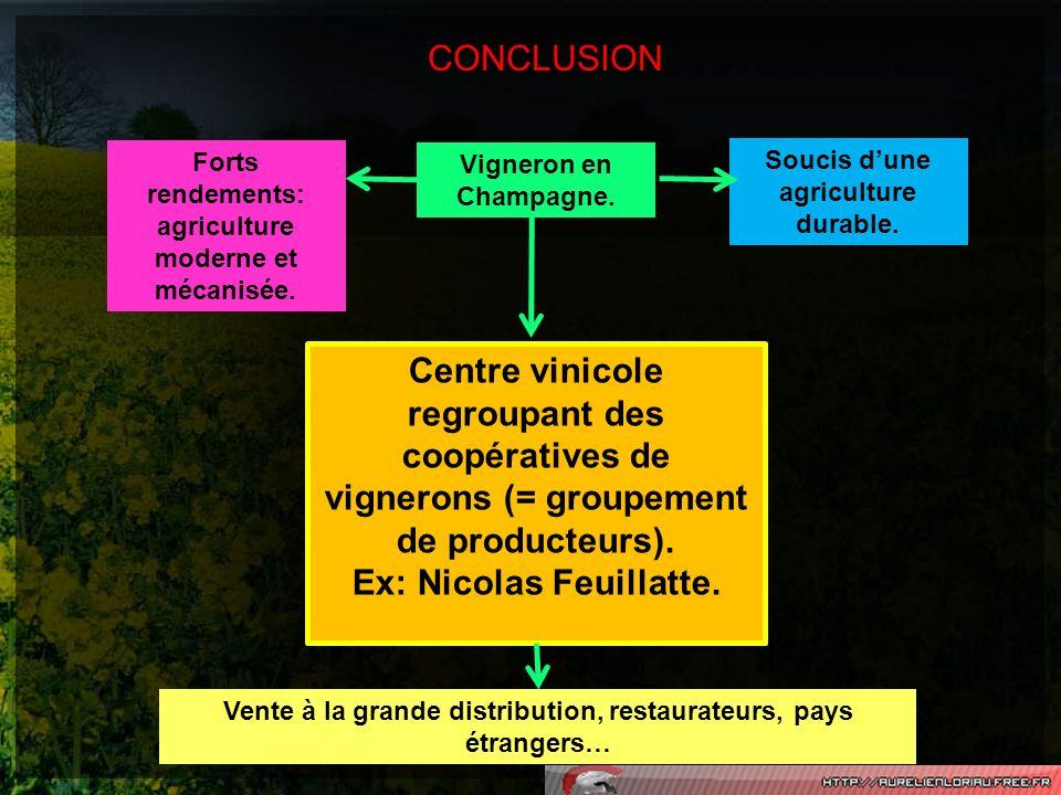 Ex: Nicolas Feuillatte.