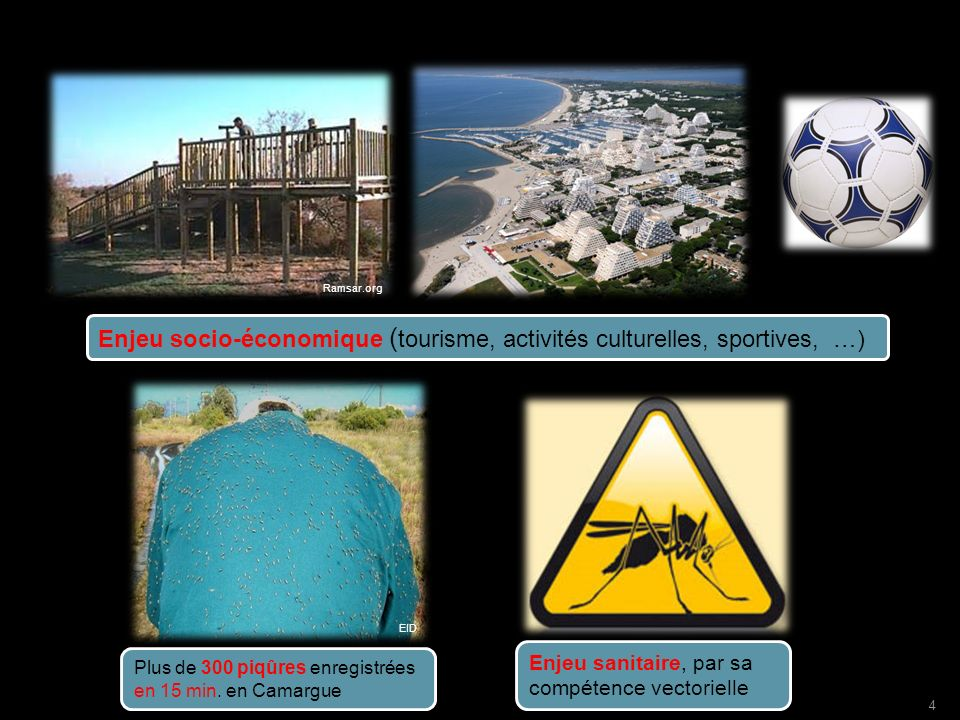 Enjeu socio-économique (tourisme, activités culturelles, sportives, …)