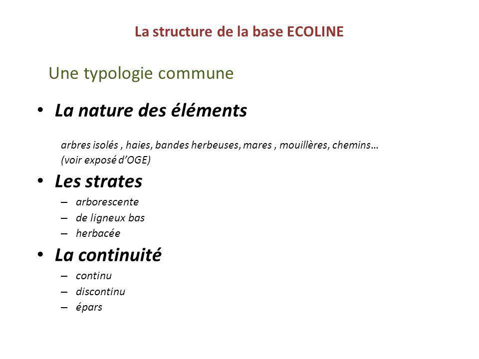 La structure de la base ECOLINE