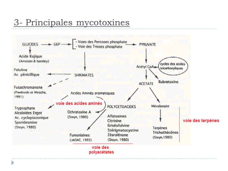 3- Principales mycotoxines