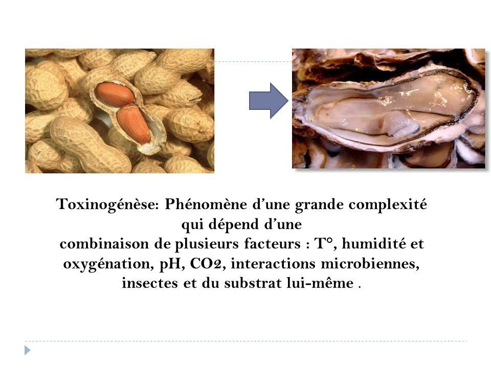 Toxinogénèse: Phénomène d'une grande complexité qui dépend d'une