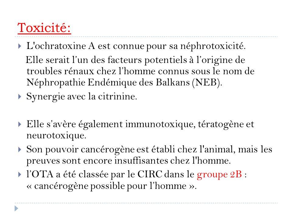 Toxicité: L ochratoxine A est connue pour sa néphrotoxicité.