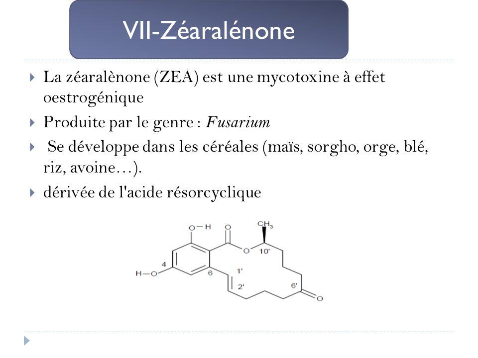 VII-Zéaralénone La zéaralènone (ZEA) est une mycotoxine à effet oestrogénique. Produite par le genre : Fusarium.
