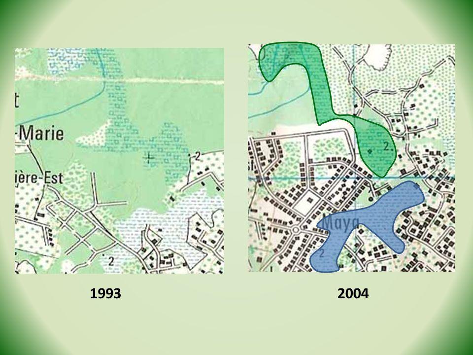 1993 2004