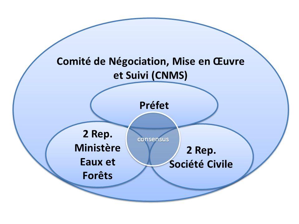 Comité de Négociation, Mise en Œuvre et Suivi (CNMS)