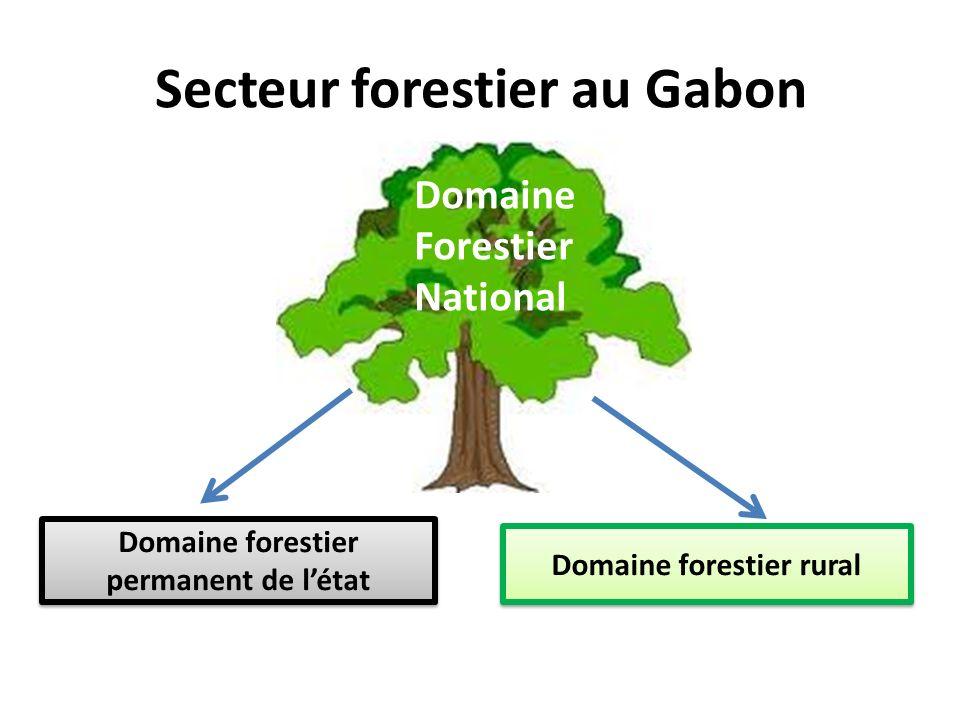 Secteur forestier au Gabon