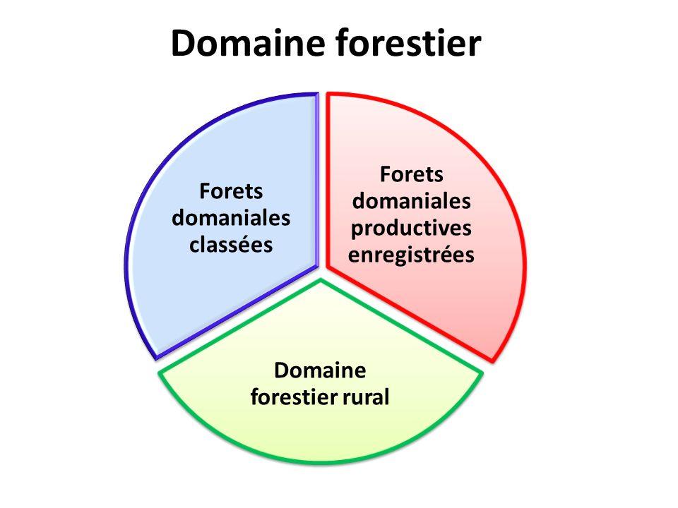 Domaine forestier Forets domaniales productives enregistrées