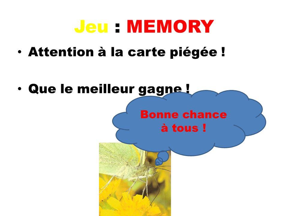 Jeu : MEMORY Attention à la carte piégée ! Que le meilleur gagne !
