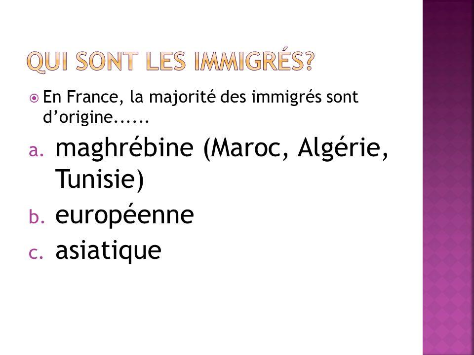 maghrébine (Maroc, Algérie, Tunisie) européenne asiatique