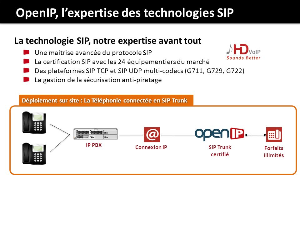 OpenIP, l'expertise des technologies SIP