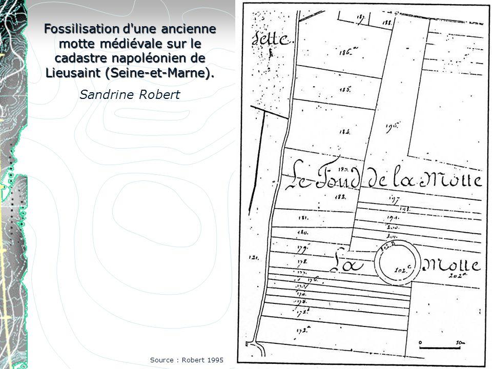 Fossilisation d une ancienne motte médiévale sur le cadastre napoléonien de Lieusaint (Seine-et-Marne).