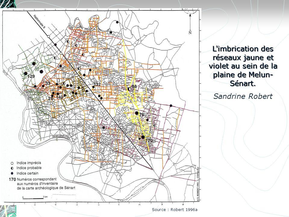 L imbrication des réseaux jaune et violet au sein de la plaine de Melun-Sénart.