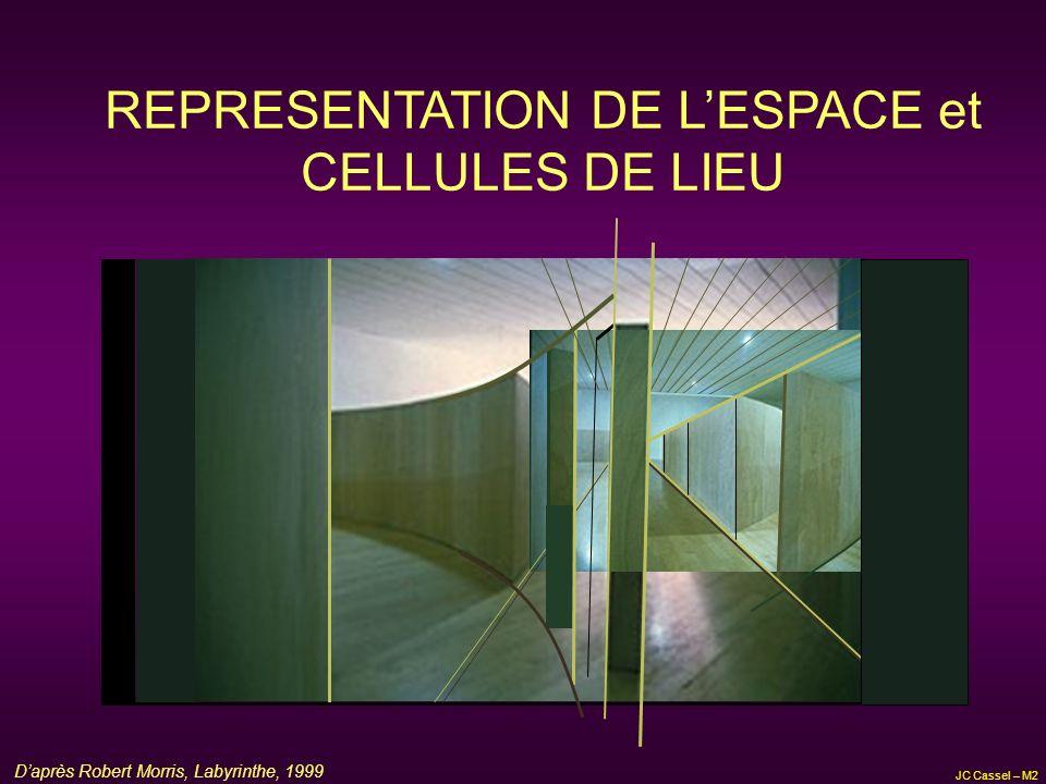 REPRESENTATION DE L'ESPACE et CELLULES DE LIEU