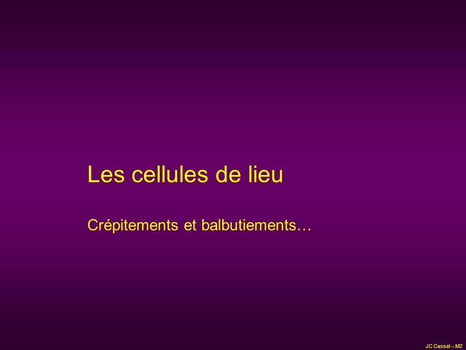 Les cellules de lieu Crépitements et balbutiements… JC Cassel – M2