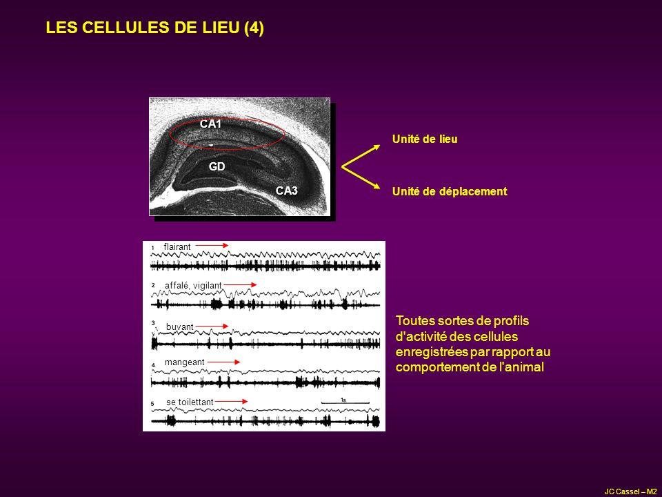 LES CELLULES DE LIEU (4) Toutes sortes de profils