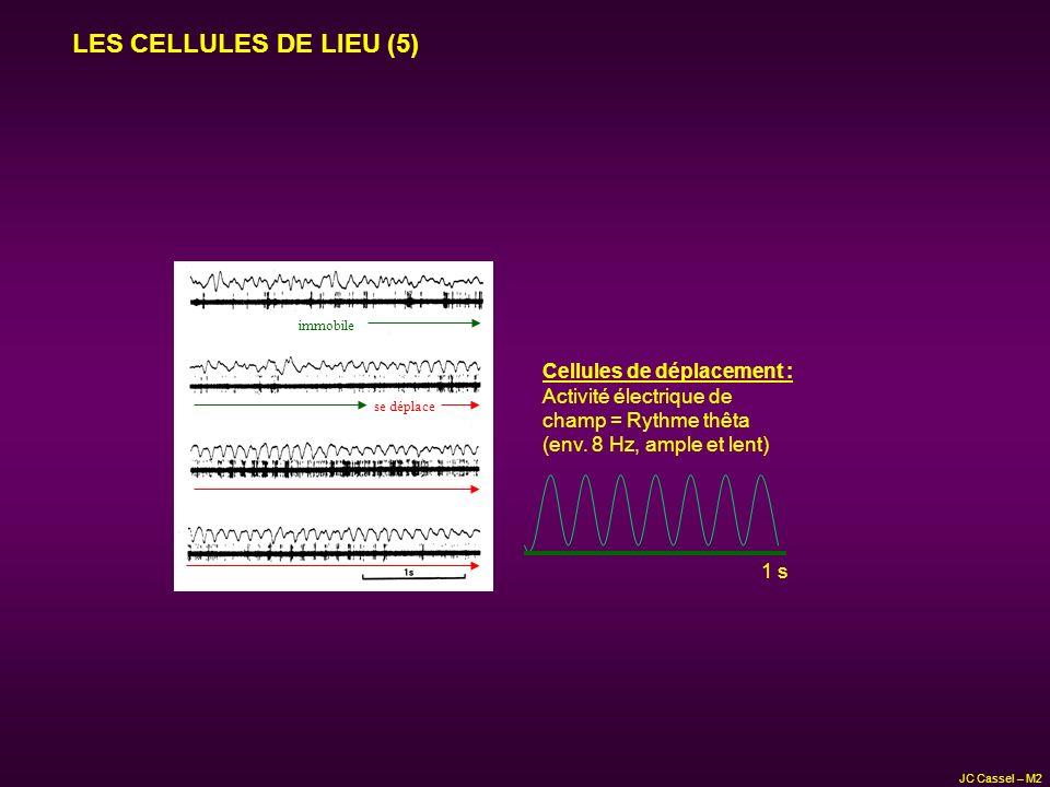 LES CELLULES DE LIEU (5) Cellules de déplacement :