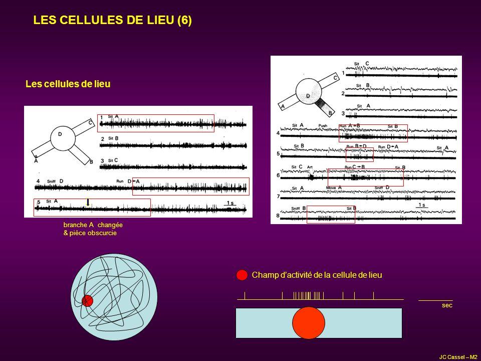 LES CELLULES DE LIEU (6) Les cellules de lieu