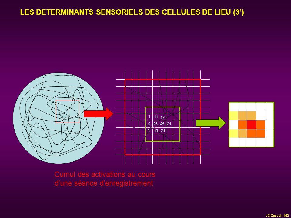 LES DETERMINANTS SENSORIELS DES CELLULES DE LIEU (3')