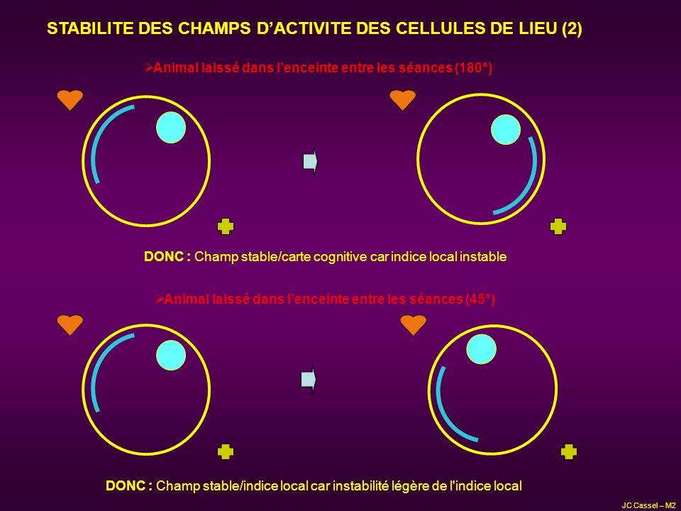 STABILITE DES CHAMPS D'ACTIVITE DES CELLULES DE LIEU (2)