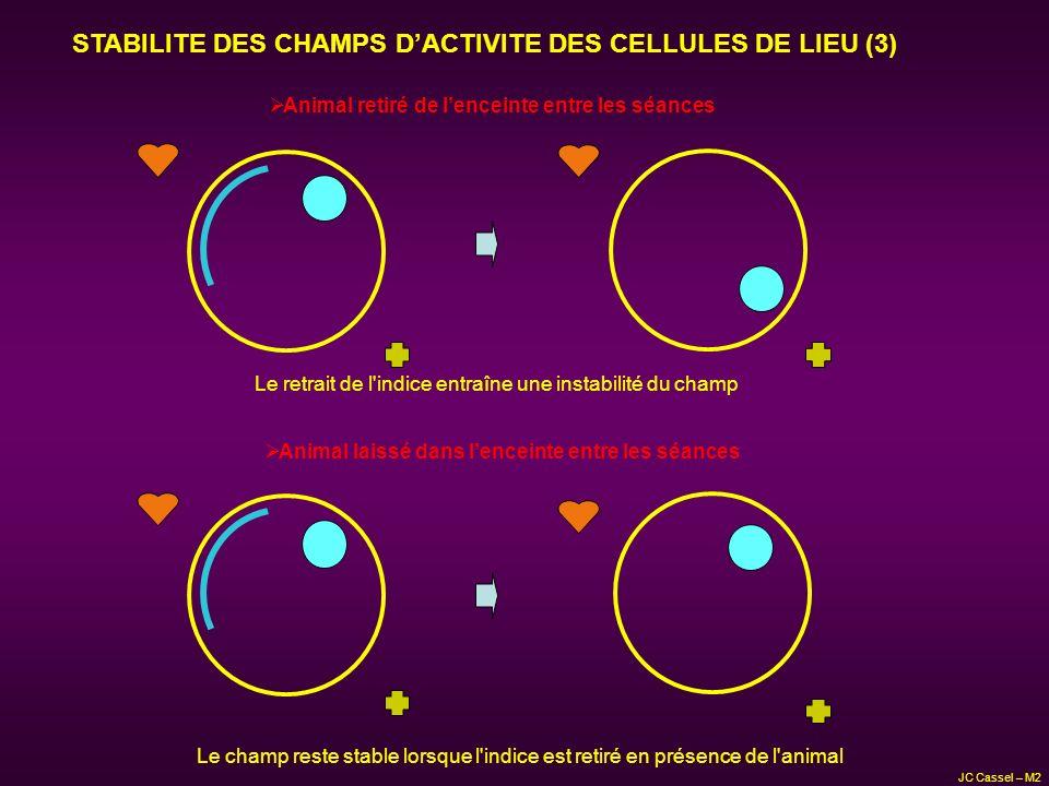 STABILITE DES CHAMPS D'ACTIVITE DES CELLULES DE LIEU (3)