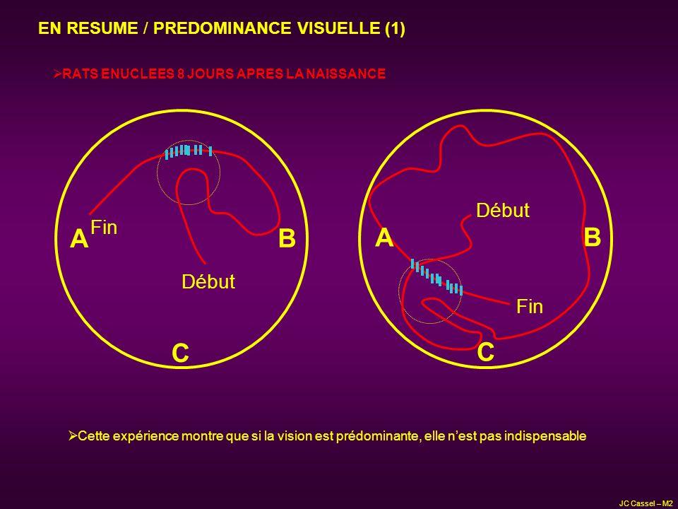 A B A B C C Début Fin Début Fin EN RESUME / PREDOMINANCE VISUELLE (1)