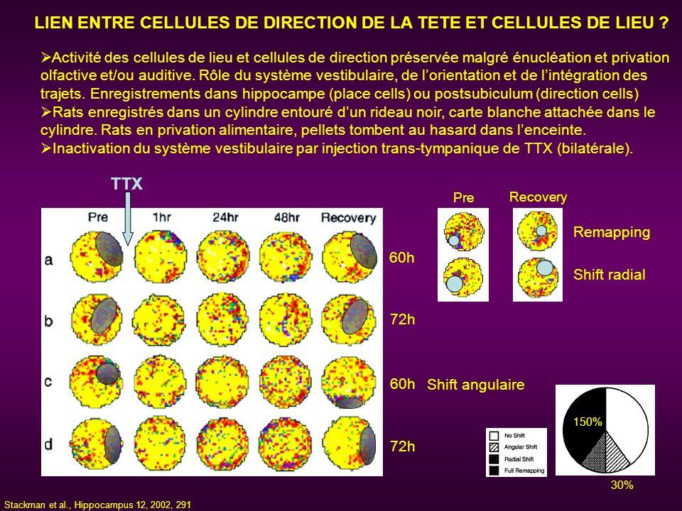 LIEN ENTRE CELLULES DE DIRECTION DE LA TETE ET CELLULES DE LIEU