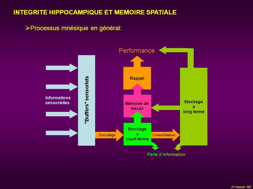 INTEGRITE HIPPOCAMPIQUE ET MEMOIRE SPATIALE