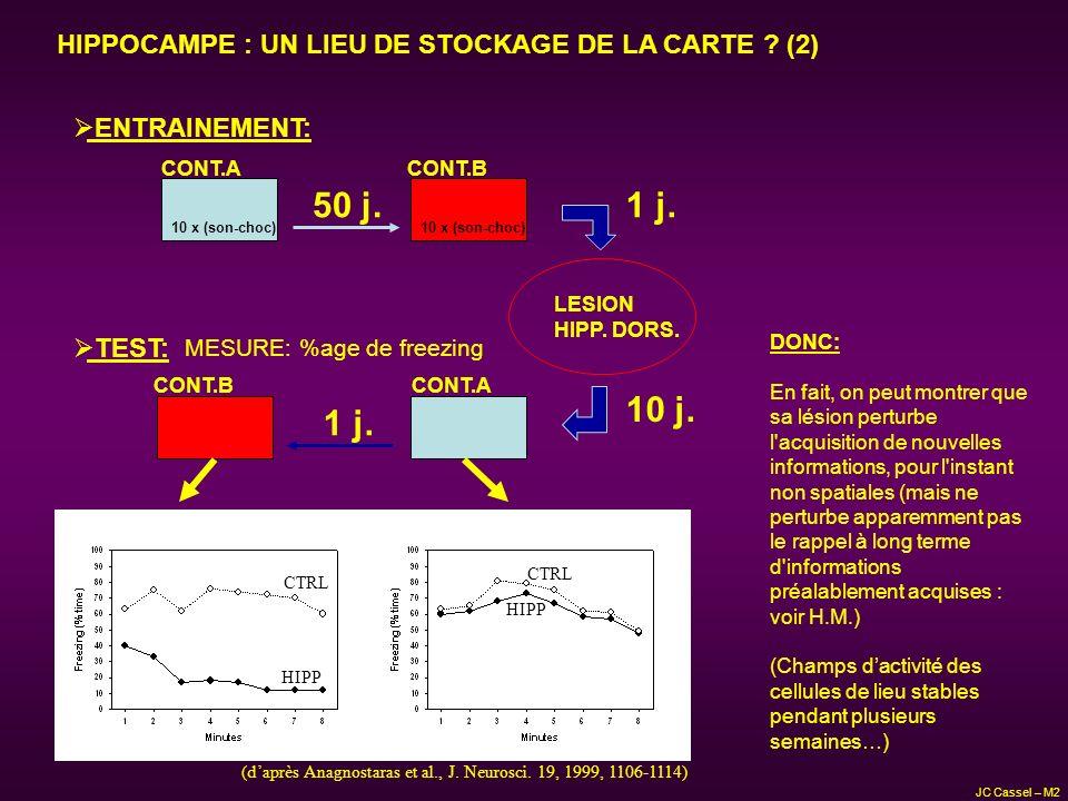 HIPPOCAMPE : UN LIEU DE STOCKAGE DE LA CARTE (2)