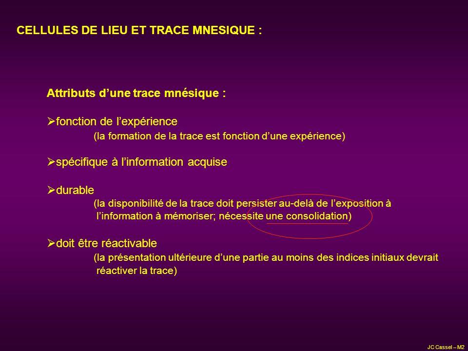 CELLULES DE LIEU ET TRACE MNESIQUE :