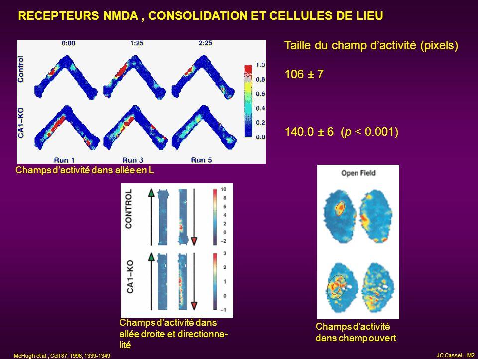RECEPTEURS NMDA , CONSOLIDATION ET CELLULES DE LIEU